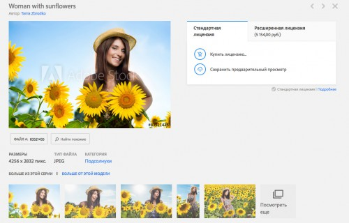 Скриншот выдачи сайта fotolia.com