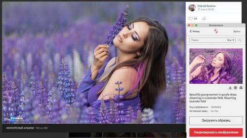 Скриншот с фотографией из конкурсного альбома https://vk.com/photo-165250158_456239163, фотограф — Сергей Вьюгин, совмещен с выдачей сайта shutterstock.com