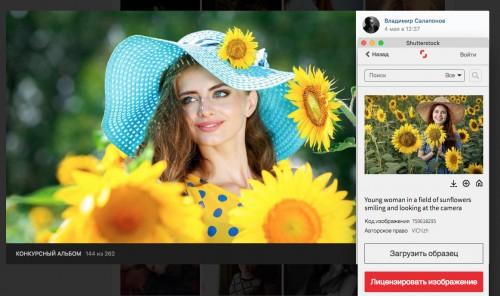 Скриншот страницы выдачи shutterstock.com, совмещенный со  скриншотом с фотографией из конкурсного альбома https://vk.com/photo-165250158_456239213, фотограф — Владимир Салапонов