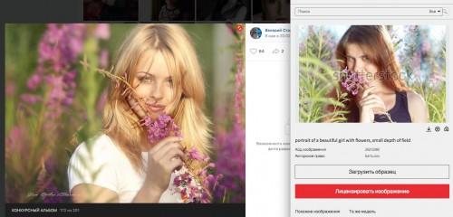 Скриншот с фотографией из конкурсного альбома https://vk.com/photo-165250158_456239250, фотограф — Валерий Старков, совмещен с выдачей сайта shutterstock.com